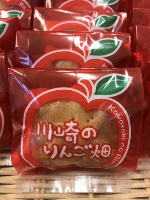 新岩城の川崎のりんご畑